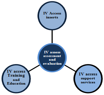 IV Assess Assessment and Evaluation